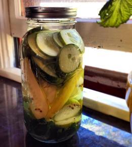 Fermenting cucumber pickles
