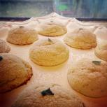 Fresh Lemon Bay Cookies
