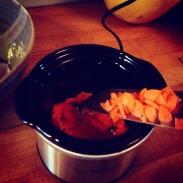 Elk stew 5