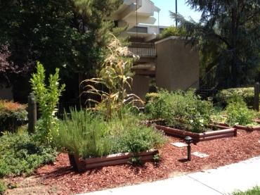 DoubleTree Garden 3