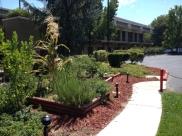DoubleTree Garden