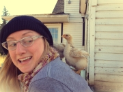 chick attack
