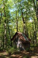 stone camp11