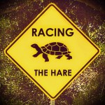 Racing the Hare